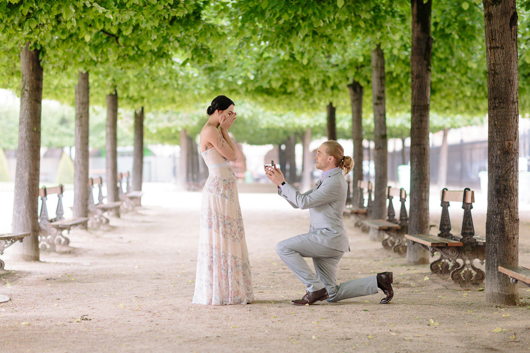 Proposal Engagement Paris French Grey Photography