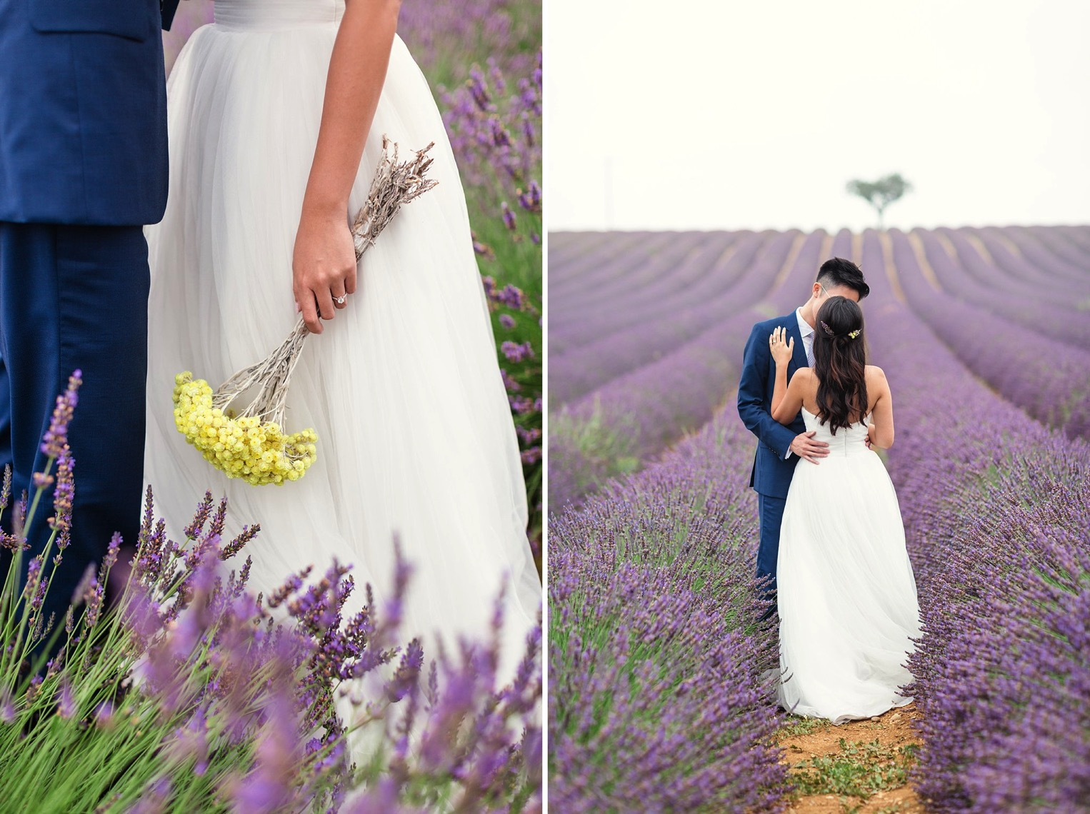 Provence Lavender French Grey Photography 12