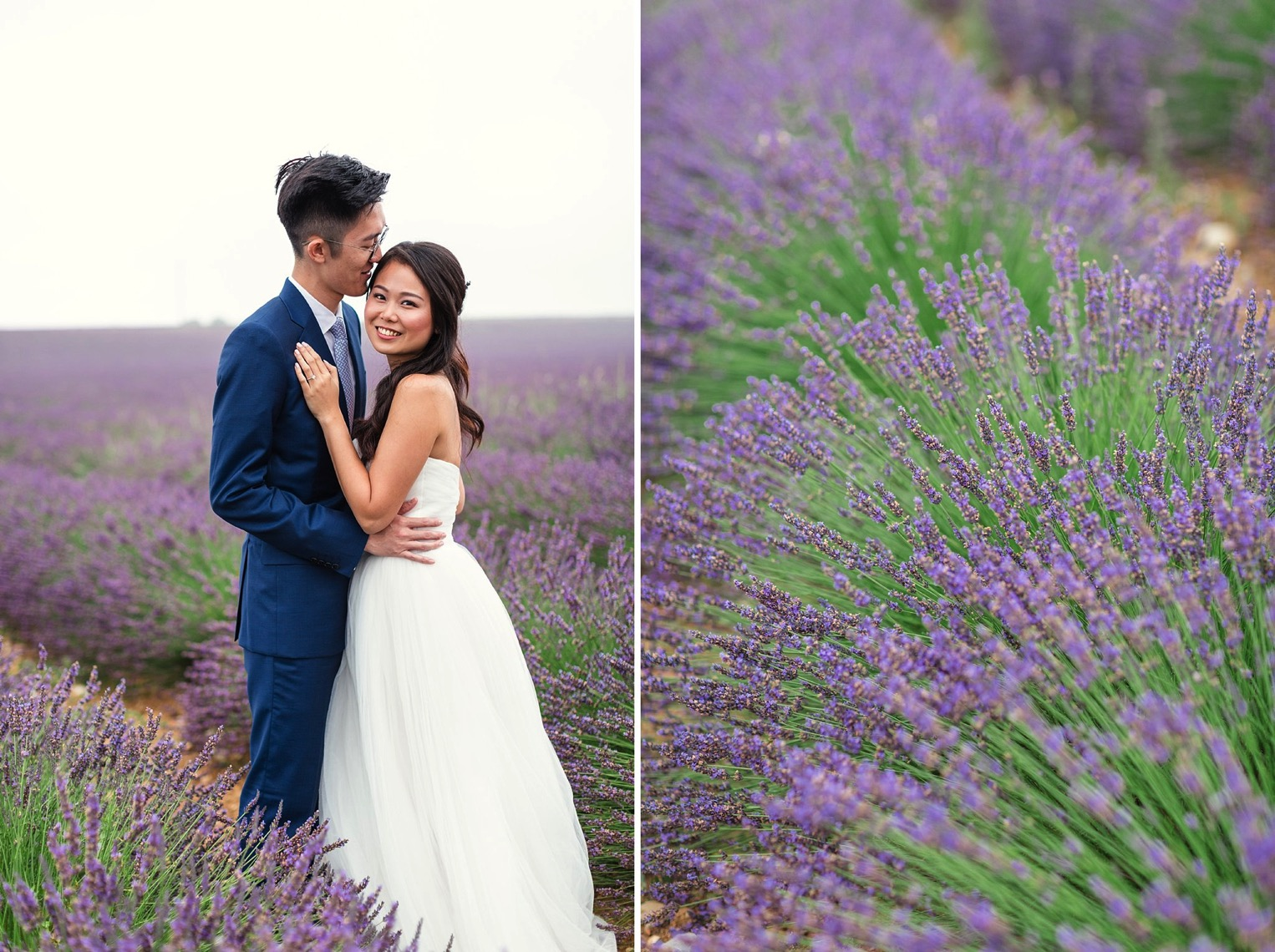 Provence Lavender French Grey Photography 15