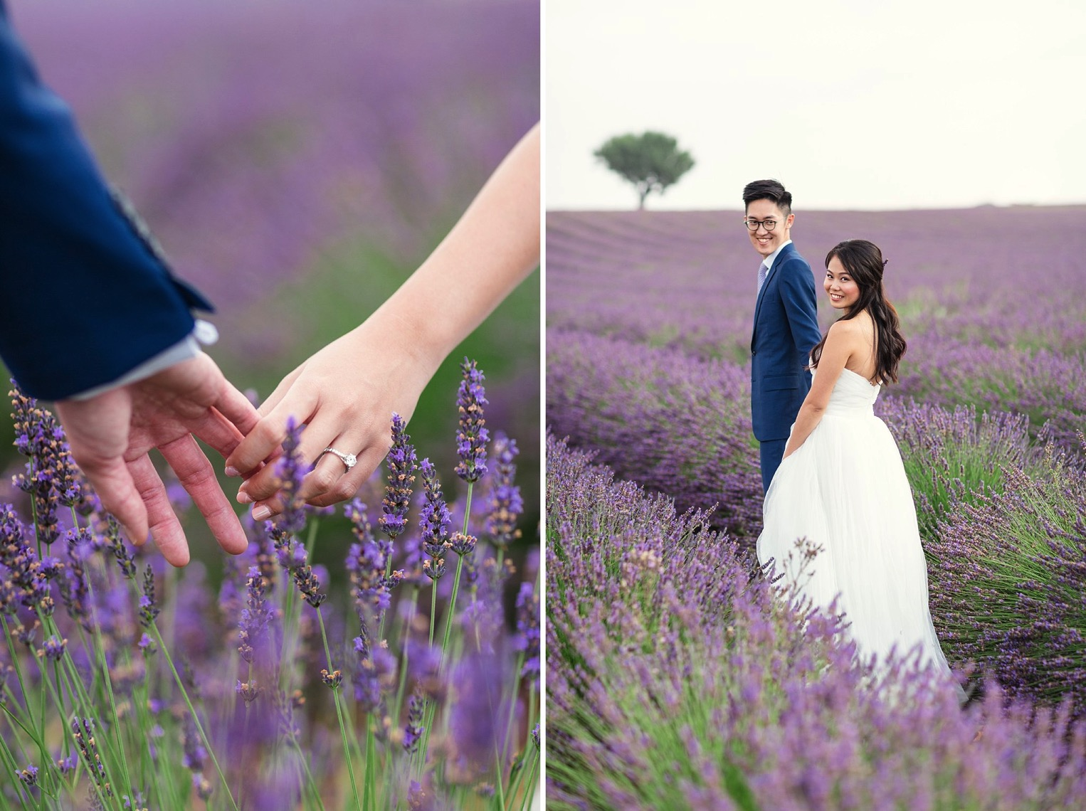 Provence Lavender French Grey Photography 35