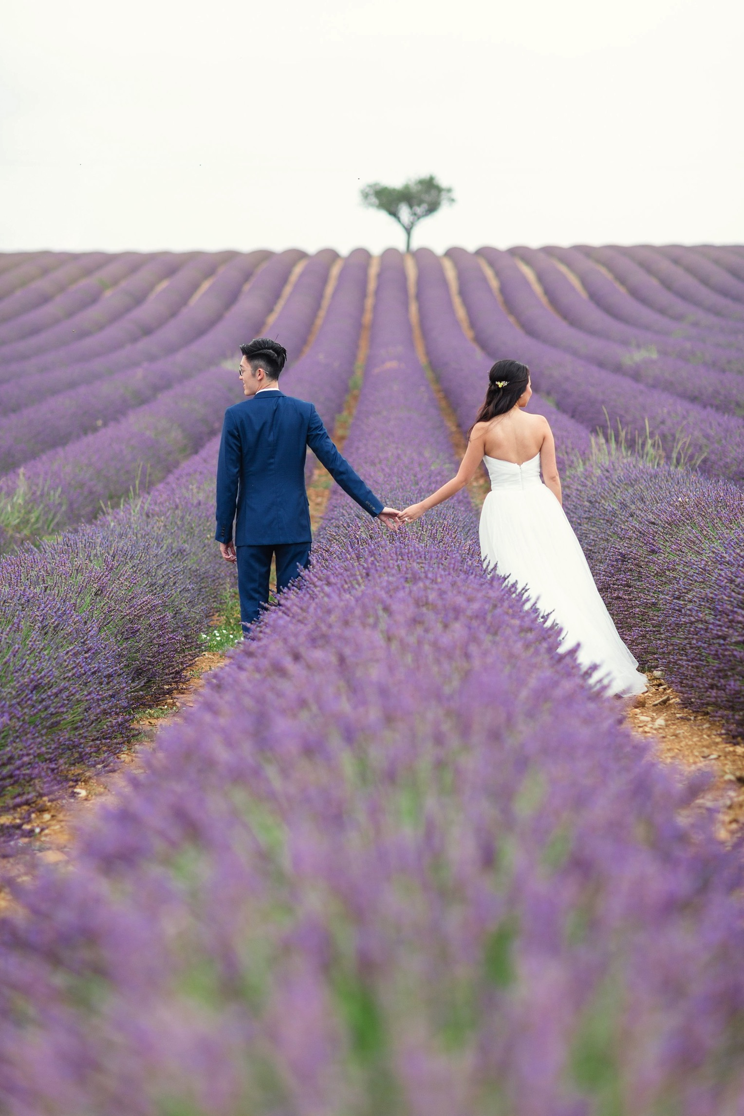 Provence Lavender French Grey Photography 39